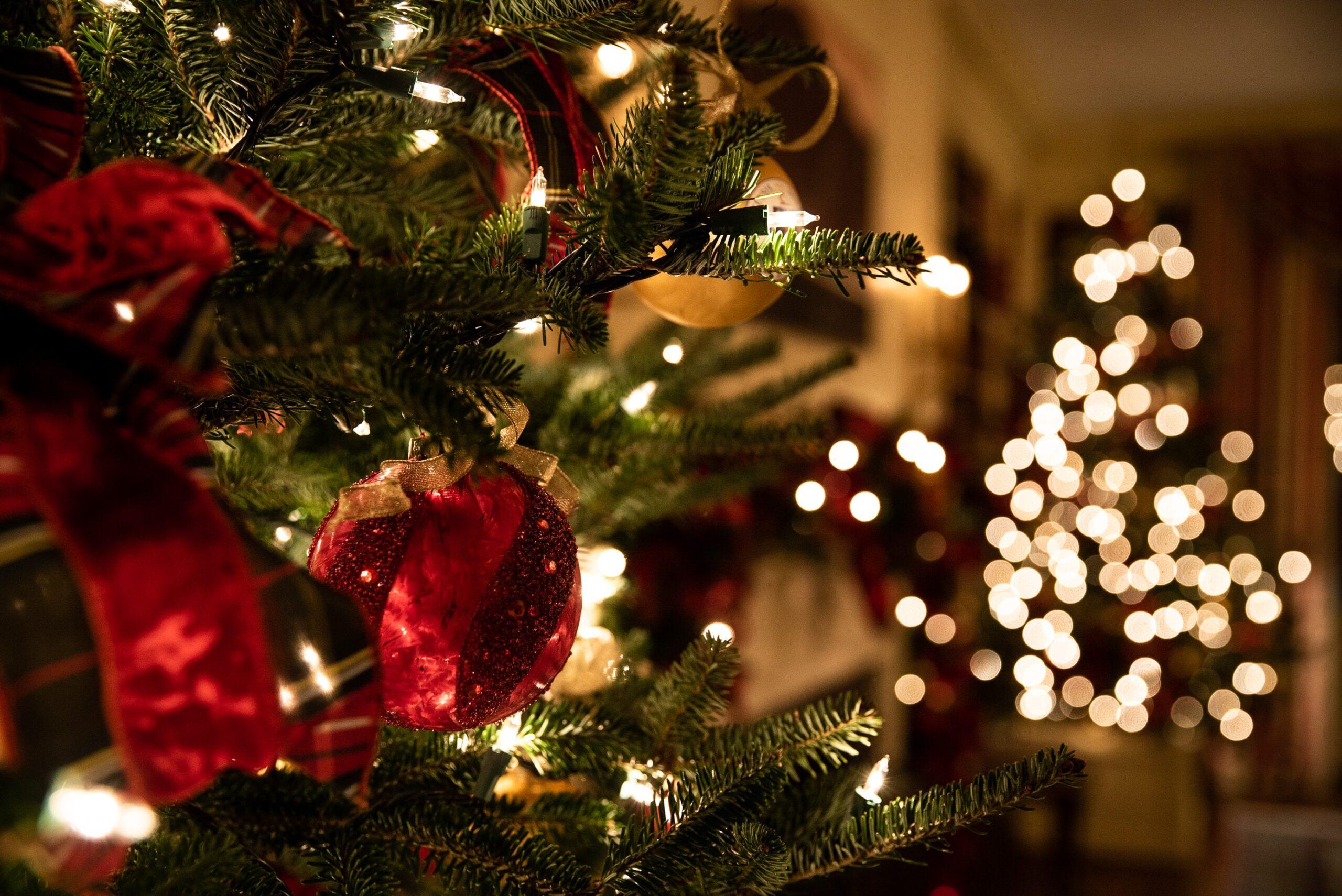 Christmas at Denham Grove